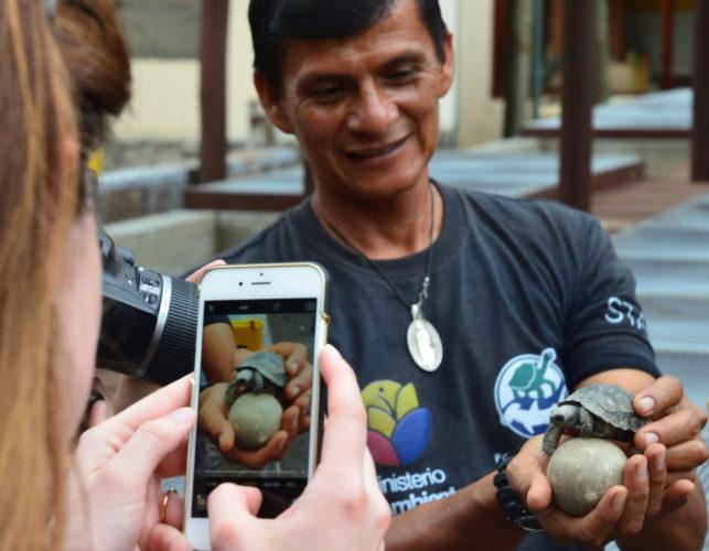 A baby tortoise at the Arnaldo Tupiza Breeding Center