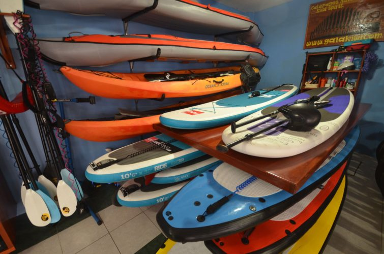 Paddle Boards for Rent