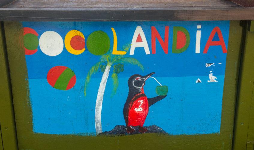 Isabela Island - Cocolandia